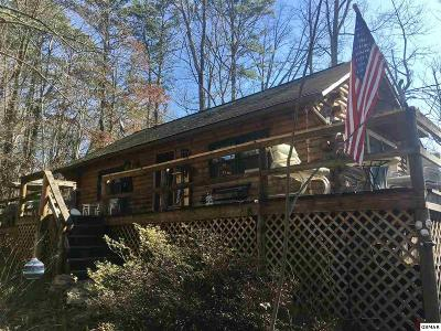 Sevierville Single Family Home For Sale: 745 Smoky Mountain View Drive