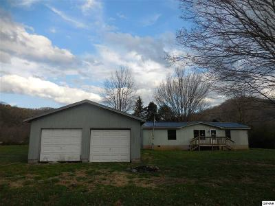 Sevierville Single Family Home For Sale: 2250 Maples Dr.