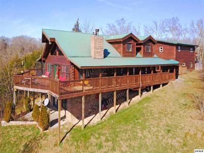 Dandridge Single Family Home For Sale: 2072 Paradise Hills Road