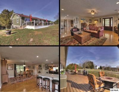 Sevierville Single Family Home For Sale: 239 Leamar Drive