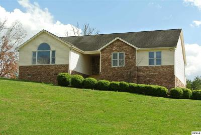 Sevierville Single Family Home For Sale: 519 Downing Ln