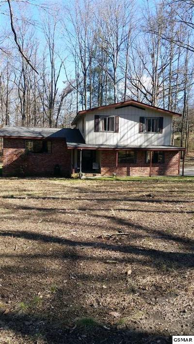 Sevierville Single Family Home For Sale: 1333 Millwood Dr