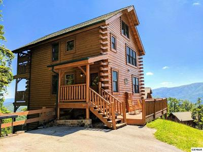 Sevierville Single Family Home For Sale: 3131 Lakeview Lodge Rd