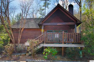 Sevierville Single Family Home For Sale: 4363 Parkside Village