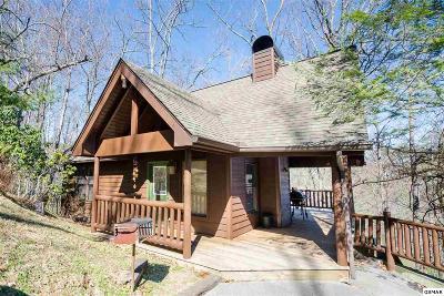 Sevierville Single Family Home For Sale: 4328 Parkside Village