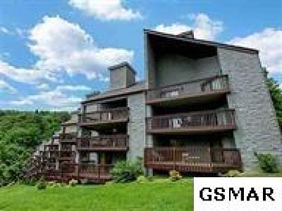 Gatlinburg Condo/Townhouse For Sale: 1155 Upper Alpine Way