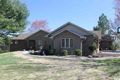Dandridge Single Family Home For Sale: 521 Canter Lane