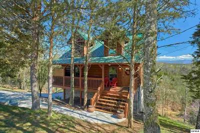 Sevierville Single Family Home For Sale: 973 Pleasure Rd