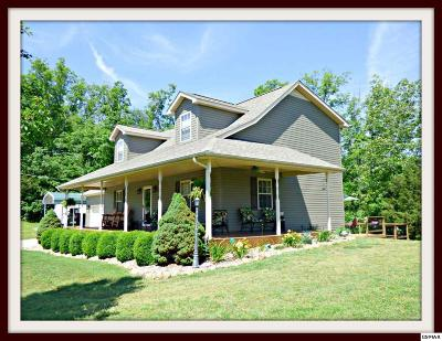 Dandridge Single Family Home For Sale: 123 Rupert Dr.