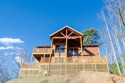Sevierville Single Family Home For Sale: 2531 Treehouse Ln