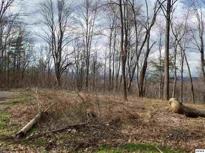 Sevierville TN Residential Lots & Land For Sale: $49,900