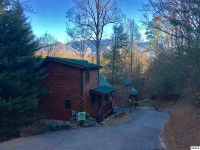 Gatlinburg Single Family Home For Sale: 754 Yona Trail Way