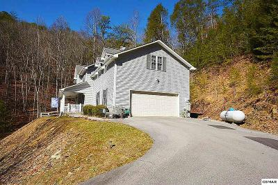 Sevierville Single Family Home For Sale: 2673 S Clear Fork Road