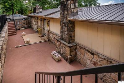 Dandridge Single Family Home For Sale: 1387 Highway 139