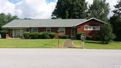 Pigeon Forge Single Family Home For Sale: 303 Ashley Ave