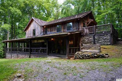 bunch cabins sale real gatlinburg in tn of estate forge ideas for pigeon simple