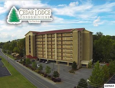Pigeon Forge Condo/Townhouse For Sale: 3919 S River Road