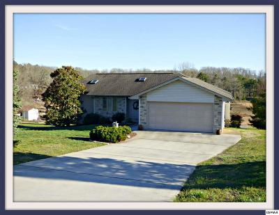 Dandridge Single Family Home For Sale: 1745 Circle Lake Dr.