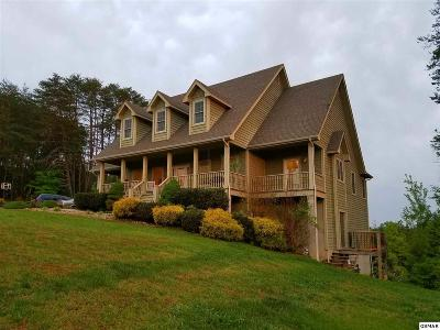 Sevier County Single Family Home For Sale: 1821 Valley Woods Dr