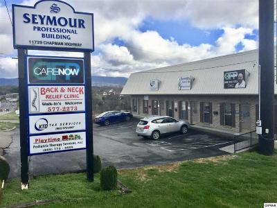Seymour TN Commercial For Sale: $759,000