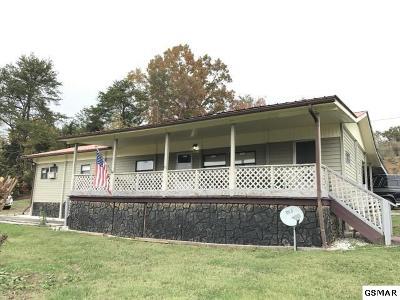 Dandridge Single Family Home For Sale: 1830 Upper Rinehart Rd
