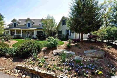 Townsend Single Family Home For Sale: 727 Bear Den
