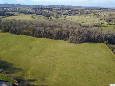 Dandridge Farm & Ranch For Sale: Treadway Drive