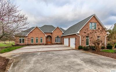 Dandridge Single Family Home For Sale: 137 Lake Breeze Drive