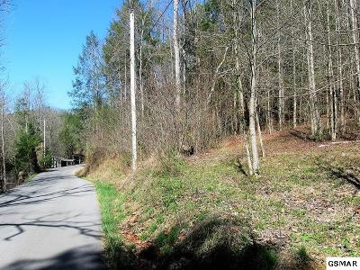 Sevierville TN Residential Lots & Land For Sale: $131,900