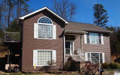 Sevier County Single Family Home For Sale: 850 Sylvia Ln