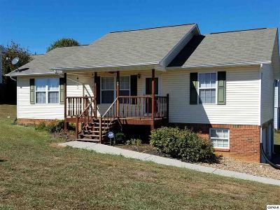 Dandridge Single Family Home For Sale: 234 Tristan Ln