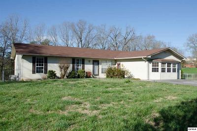 Sevier County Single Family Home For Sale: 1121 Smokyview Dr