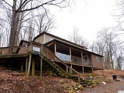 Dandridge Single Family Home For Sale: 1003 W Highway 25 70