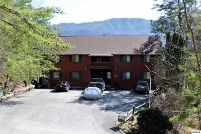 Gatlinburg Condo/Townhouse For Sale: 429 Deer Path Ln Apt 104