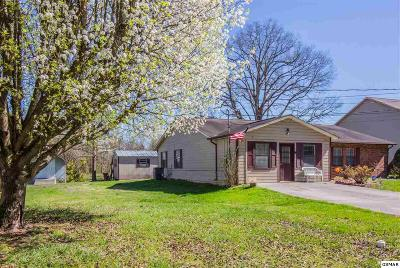 Single Family Home For Sale: 2837 Willa View Dr