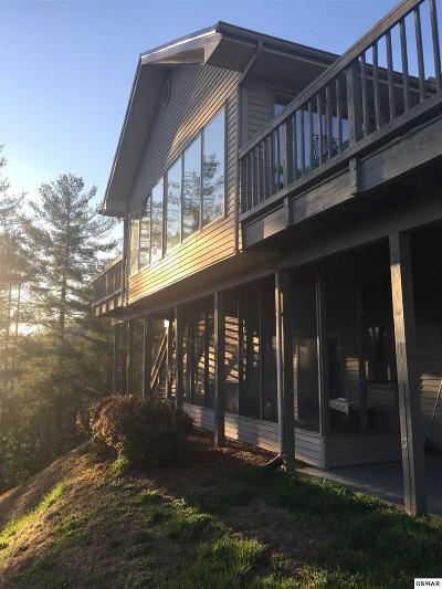 Sevier County Single Family Home For Sale: 3206 Hickey Rd