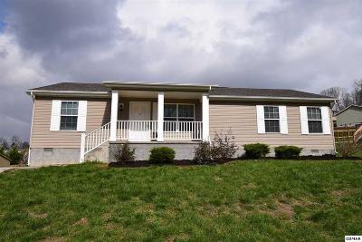 Dandridge Single Family Home For Sale: 1187 Case View Rd