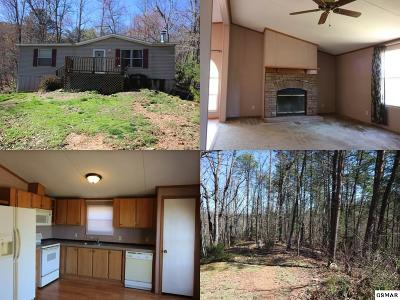Sevierville Single Family Home For Sale: 2318 High View Road