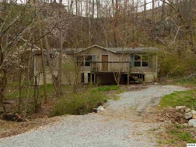 Gatlinburg Single Family Home For Sale: 275 Beech Branch Rd.