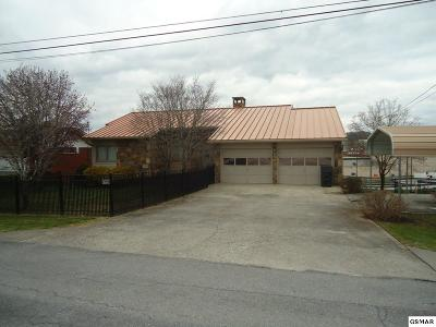 Pigeon Forge Single Family Home For Sale: 218 Mountain Vista Drive