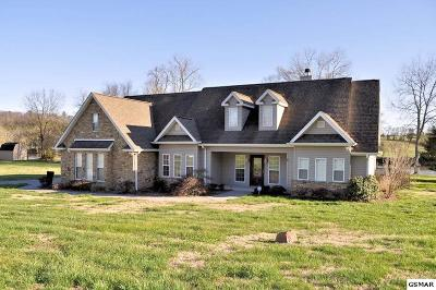 Sevier County Single Family Home For Sale: 2940 Deep River Drive