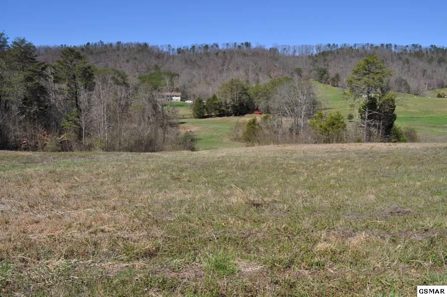 6 2 acres in Seymour for $79,900