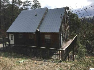 Sevier County Single Family Home For Sale: 3046 Engle Mtn