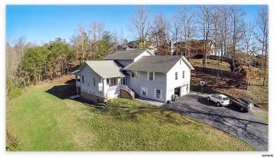 Sevier County Single Family Home For Sale: 801 Kings Hills Blvd.