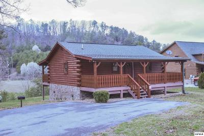 Sevier County Single Family Home For Sale: 2711 Dayne Dr
