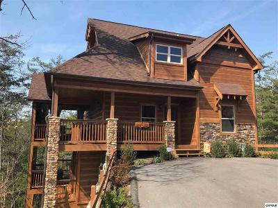 Pigeon Forge Single Family Home For Sale: 1338 Parkview Vista Way