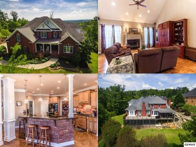 Knoxville Single Family Home For Sale: 12704 Shady Ridge Lane