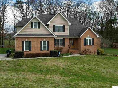 Sevier County Single Family Home For Sale: 1469 Robert Ridge Rd