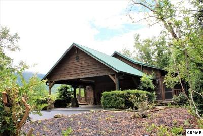 Gatlinburg Single Family Home For Sale: 4705 Townsend Dr