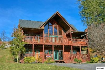 Sevierville Single Family Home For Sale: 1504 Bears Den Way